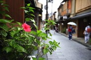 Feel the true Kyoto in narrow alley and Gion district